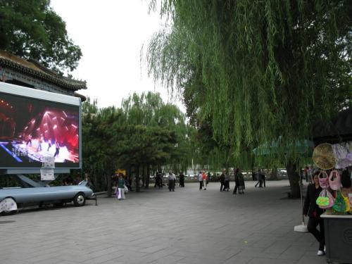 china8-5