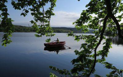 Lördag Hemma! Aktiva vid sjön och i trädgården. Å potatis!