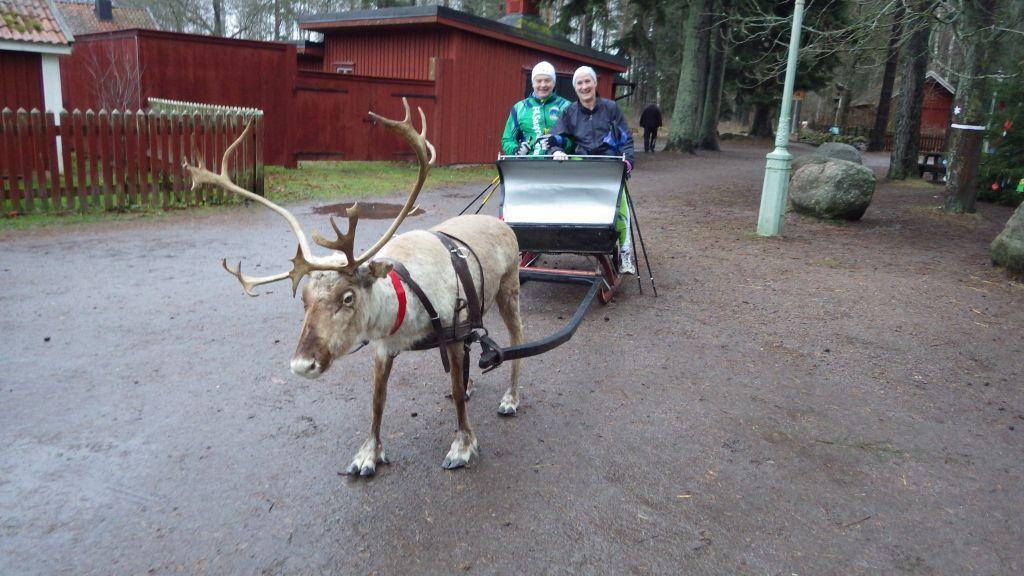 Lördag Stavgång i Vallaskogen, möte med Tomtens ren och julbord på Omberg