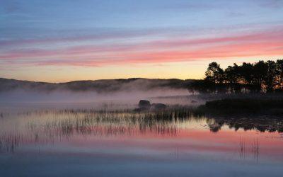 Torsdag Morgondopp och första frosten
