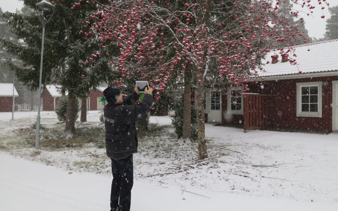 Fredag Snöfall, Skidor och Stugmys