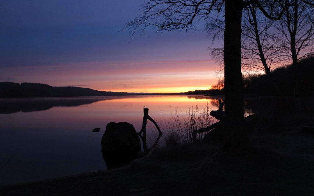 Tisdag Magiskt vacker morgon vid Västersjön