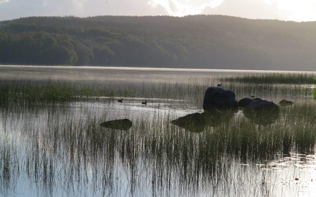 Torsdag Morgon vid sjön, Coach Kvist och bilen norrut