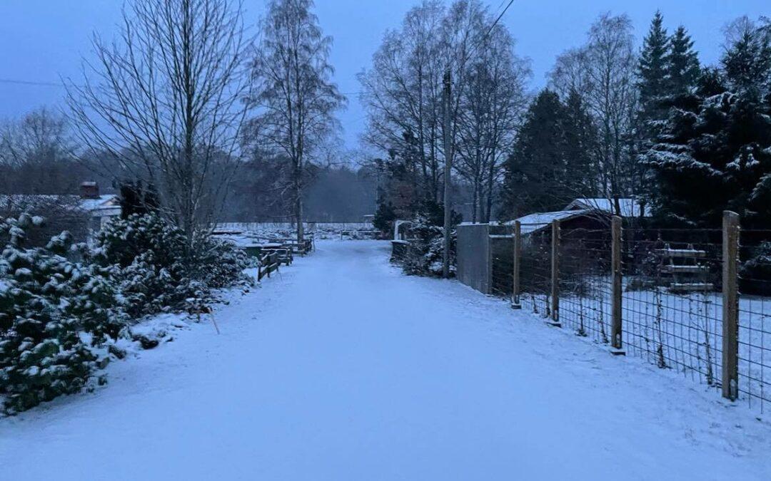 Torsdag Å där kom det lite vinter igen…