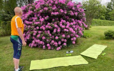 Tisdag Rododendron, cykel till jobbet och hemmafix